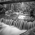 Marcy Trail Waterfaill High Water Bridge Adirondacks New York Black And White by Toby McGuire