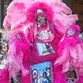 Mardi Gras Indian by Dotti Hannum