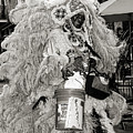 Mardi Gras Indian In Pirates Alley In Black And White by Kathleen K Parker