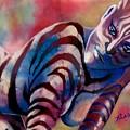 Mardi Gras Zebra by Robert D McBain