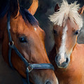 Mare And Foal by Diane Chandler
