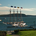 Margaret Todd - Bar Harbor Icon by Paul Mangold
