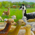 Mariah Guards The Herd by Oz Freedgood