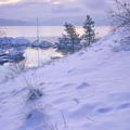 Marina And Snow by Idaho Scenic Images Linda Lantzy