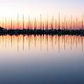 Marina At Dawn by Farol Tomson