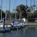 Marina Del Rey California 2 by Karl Rose