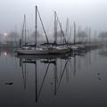 Marina In The Mist by John Zawacki