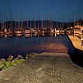Marina Nightlights by Karen Goodwin