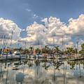 Marina Reflections by Jane Luxton