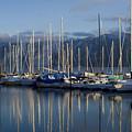 Marina Tranquility by Idaho Scenic Images Linda Lantzy