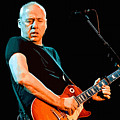 Mark Knopfler by Don Kuing