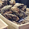 Market Fresh Oysters by Heather Applegate