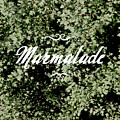Marmalade by Kalyj