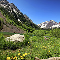 Maroon Bells In Summer 2 by Judy Vincent