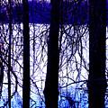 Marsh by Brian M Lumley