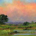 Marsh by Diane Martens