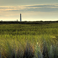 Marsh Grass And Morris Island Lighthouse by Dustin K Ryan