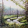 Marsh Lands by Richard T Pranke