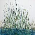 Marsh Life II by Linda Wimberly