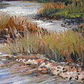 Marsh Reflections by Marilyn Masters