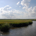 Marsh Scene Charleston Sc II by Susanne Van Hulst