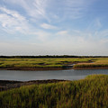 Marsh Scene Charleston Sc by Susanne Van Hulst