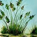 Marsh Weeds by Brenda Owen