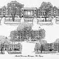 Marshall University by Jessica Bryant