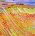 Marshlands by Judith Redman