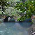 Martha Brae River by Carol  Bradley