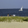 A Day At The Beach 2 - Martha's Vineyard by Madeline Ellis