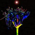 Martian Flower by David Lee Thompson