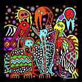Maruvian Bird Gallery by Marcella Muhammad