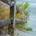 Marvel Of An Ordinary Fence by Patrice Zinck