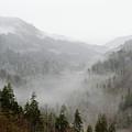Marvelous Mist by Kristina Plaas