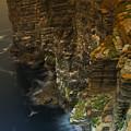 Marwick Head Orkney Scotland by Gabor Pozsgai