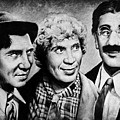 Marx Bros by Andrew Read