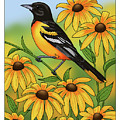 Maryland State Bird Oriole And Daisy Flower by Crista Forest