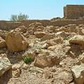 Masada I by Susan Heller