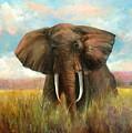 Masai King by Sally Seago
