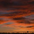 Masai Mara Sunset by Sandra Bronstein