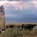 Masaii Cattle by Don Schimmel