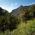 Masca Valley And Parque Rural De Teno 2 by Jouko Lehto