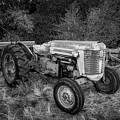 Massey Ferguson 50 Series Tractor by TL Mair