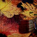 Master Of Colouring by Joachim G Pinkawa