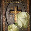Master's Plan by Phyllis Denton