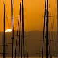 Masts At Dawn by Mick Burkey