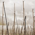 Masts In Sepia by Carol Groenen