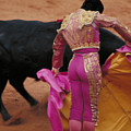 Matador And Bull by Carl Purcell
