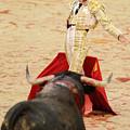 Matador Joselillo I by Rafa Rivas